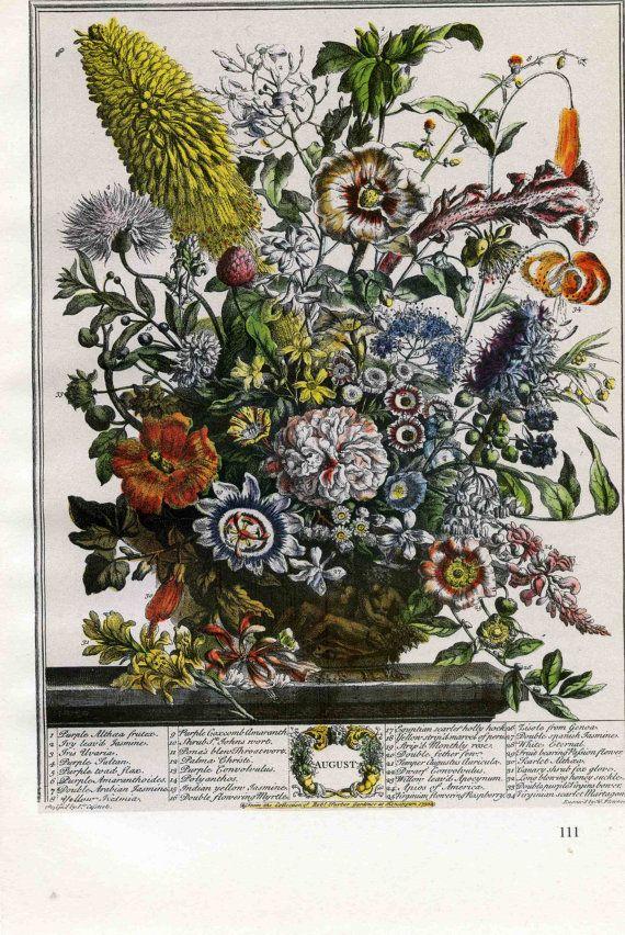 August Flowers Botanical Print Monthly Floral Arrangement