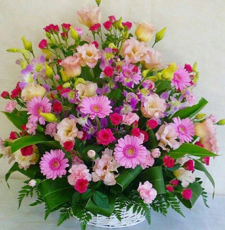 60 best Flowers images on Pinterest Beautiful flowers, Flowers - m bel pallen k chen