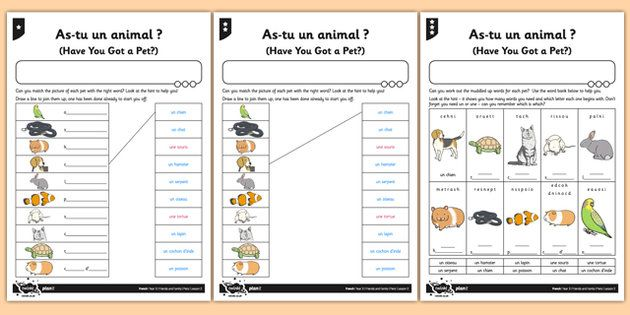 French Activity Sheet As Tu Un Animal - french, activity, as tu un animal, animal, francais