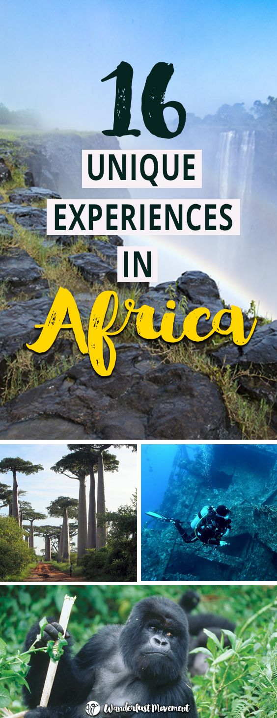 16 Unique Experiences You Need To Have in Africa   Wanderlust Movement