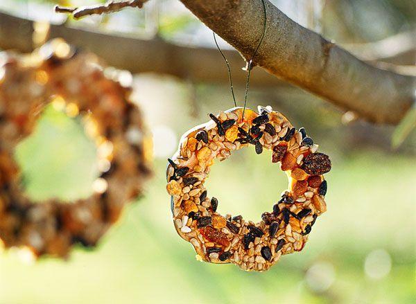 Acorn squash wreath bird feeders coat the ring of for Acorn feeder