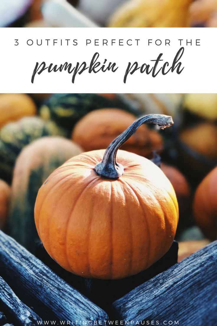 3 Outfits Perfect for the Pumpkin Patch   Writing Between Pauses