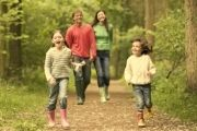 Whether you're in the mood for a long walk or a peaceful stroll, enjoy a breath of fresh air, admire the scenery and spot nature on a walk through the woods with your children.http://www.thestaycation.com/galwaywoods.php