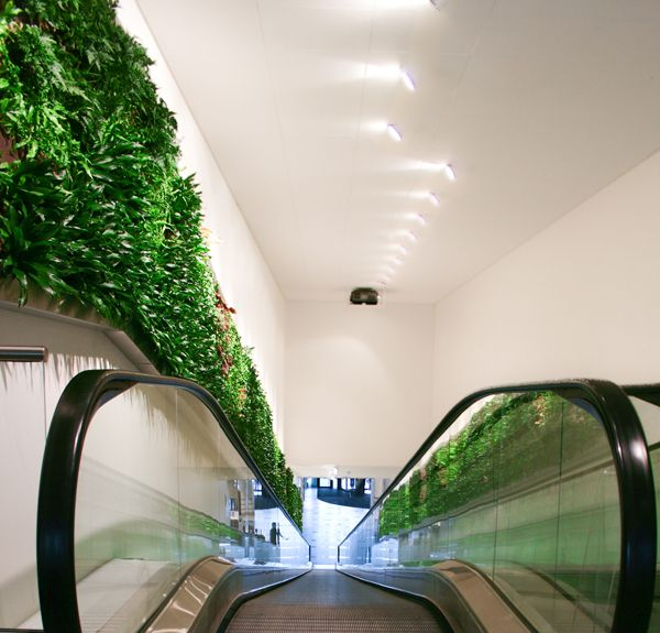 Wallscreen - Tropisk Design Green wall, plant, plants, living wall, escalator