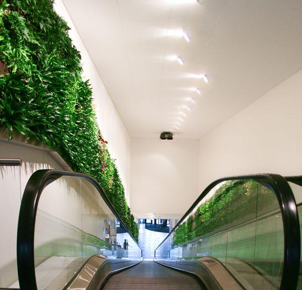 Wallscreen - Tropisk Design Green wall, plant, plants, living wall, escalator