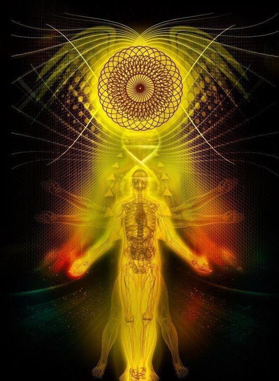 #psychedelicmindscom psy-minds.com