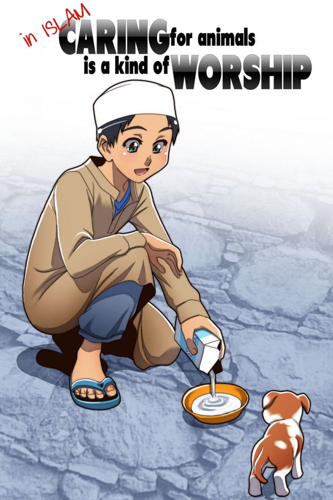Boy Pouring Milk for Puppy, islam, wisdom, mercy towards animals, animal rights
