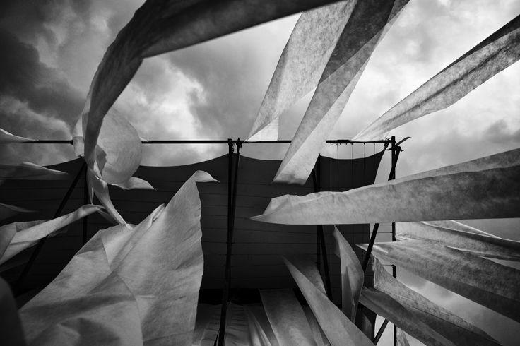 Willow Theater / Tim Lai Architect + Brad Steinmetz Stage Design