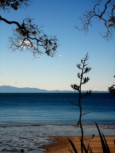 Waitete Bay, Coromandel, New Zealand
