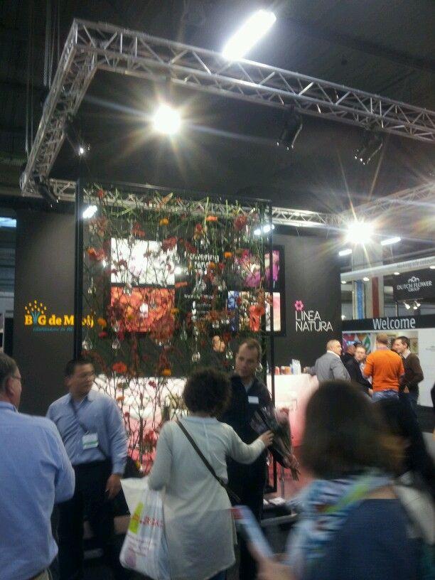 Stand B&G de Mooij op de Flora Holland Trade Fair!