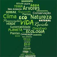 Pedagógiccos: Dia do Meio Ambiente - atividades                              …