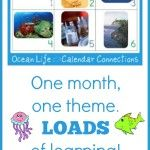 Ocean Life ~ August ~ Calendar Connections Cards