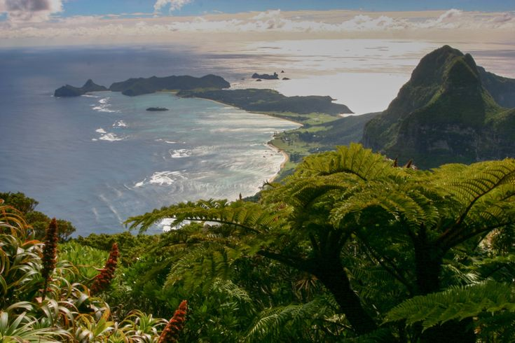 The view from the summit of Mount Gower on Lord Howe Island - regarded as one of the best walks in NSW
