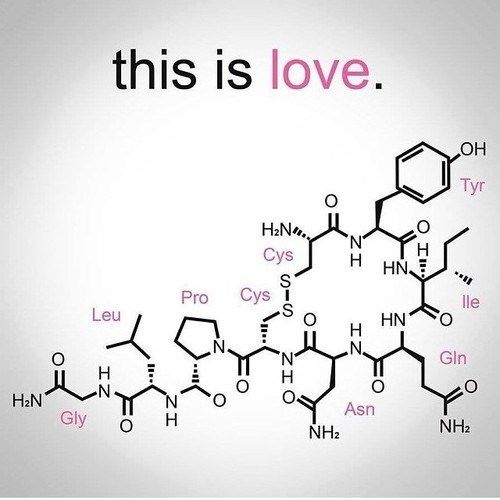 this is the chemical composition of LOVE