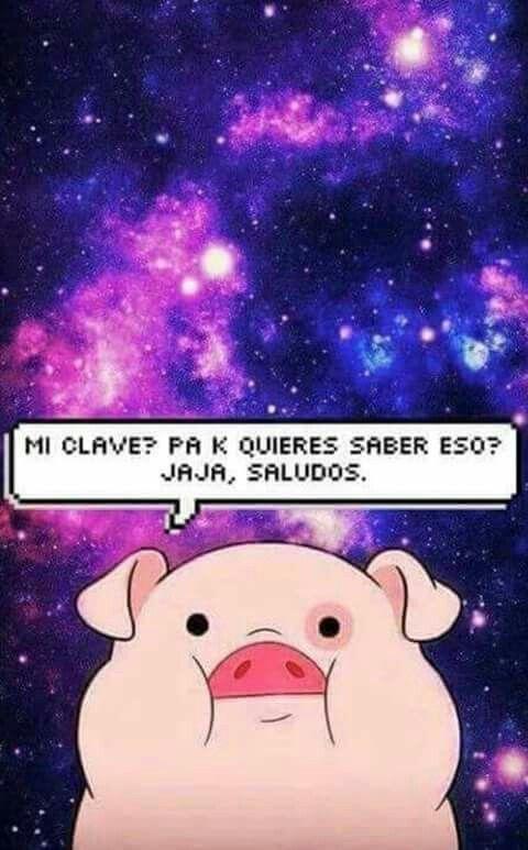 Jajaja                                                       …