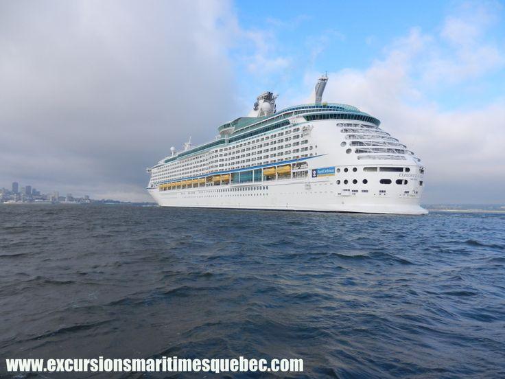Les géants des mers avec Excursions Maritimes Québec. On peut voir leurs départs et leurs arrivées à bord de nos bateaux Zodiac en les photographiant.