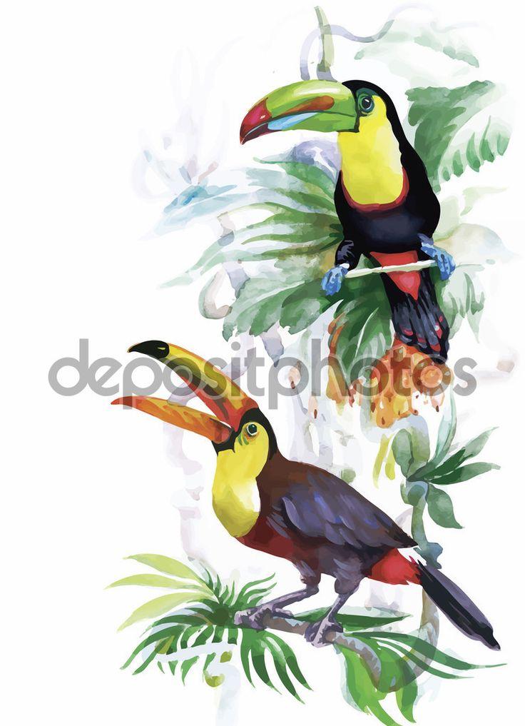 Ακουαρέλα άγρια εξωτικά πουλιά στα λουλούδια
