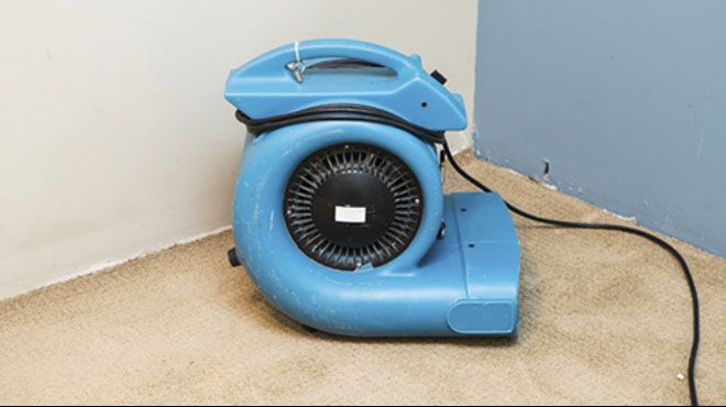Blog | What to do in a carpet flood emergency