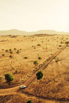 Kidepo National Park, Uganda                                                                                                                                                                                 Mais