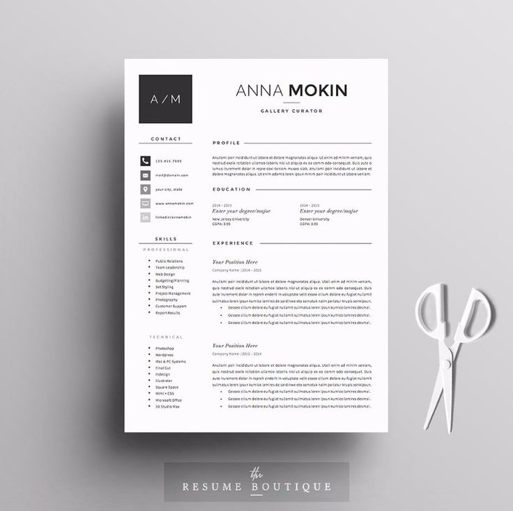 Best  Professional Resume Templates  PsdWordIndesignDoc