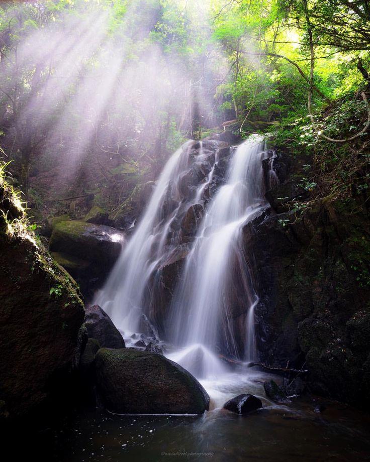 "「Light Waterfall」 ・ Location:Shiga JAPAN🇯🇵 ・ ""Keimeki waterfall"" in Shiga prefecture. On sunny days the light is beautiful. ・ 滋賀県鶏鳴の滝。カメラを始めた頃から何度も来る滝です^ ^光芒狙いに行きましたが現地で年配の方がおられ既にセッティング済みでした。ご挨拶して準備に取り掛かると「きたで!5分勝負や!」と。滝と光芒は難しいです(*´Д`*) ・ さて今日はすることが多い。夜は雨みたいだけど撮影行こうかな^ ^ ・ ・ #igersjp #japanawaits #instagramjapan #dairy_photo_jpn #ig_japan #Lovers_Nippon #icu_japan #japan_of_insta #team_jp_ #bestjapanpics #東京カメラ部 #tokyocameraclub #wu_japan #photo_shorttrip #ptk_japan #art_of_japan…"