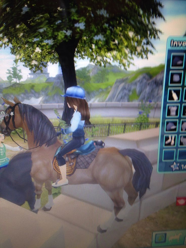 star stable how to find the jarlaheim ferry landing