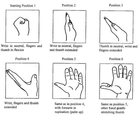 10 best Ulnar Nerve PT Exercises images on Pinterest | Exercises ...