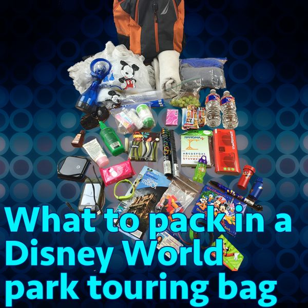 Great list of things you might need while in a Disney park!