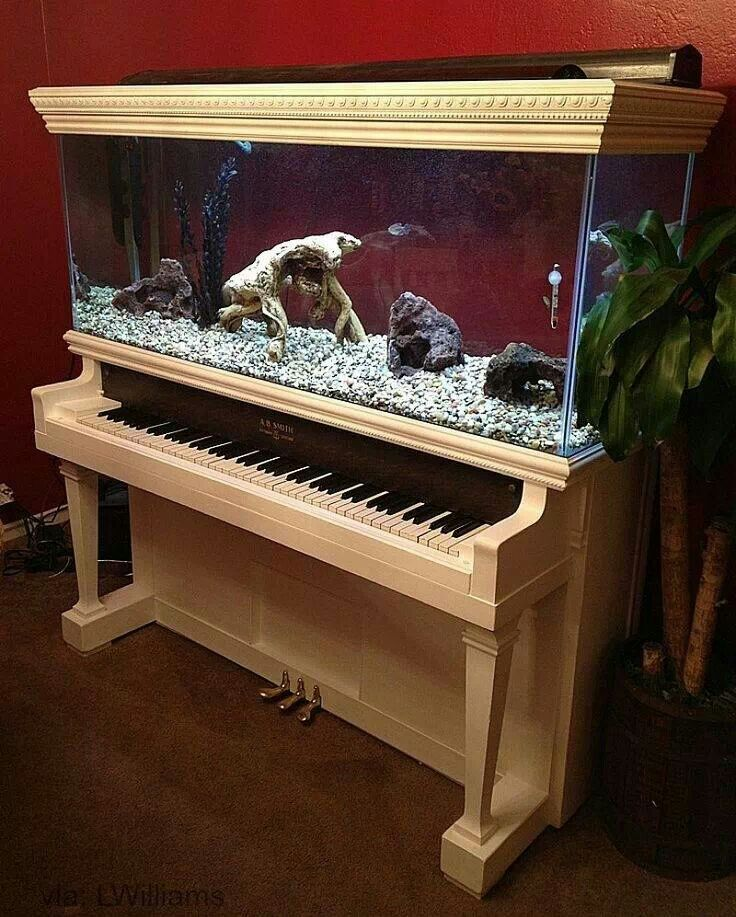Recycled piano aquarium. If I could find an old piano, I'd put this in my future music room.