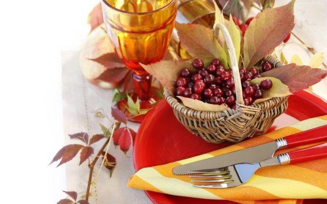 Blog o zdrowym i naturalnym odżywianiu, ziołach, przyprawach i roślinach.: ŻURAWINA - malutkie, czerwone owoce o niesamowitych właściwościach leczniczych !