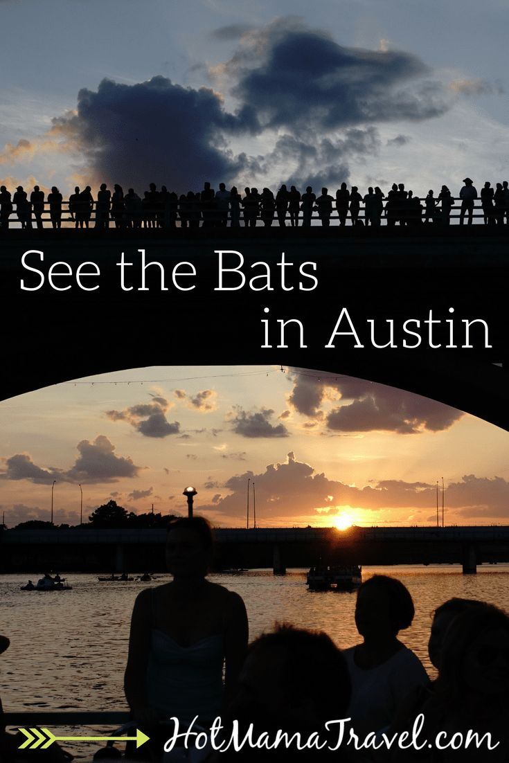 Austin Bat Cruise: A must see when visiting Austin, Texas with kids. #TravelDestinationsUsaSouth #TravelDestinationsUsaTexas