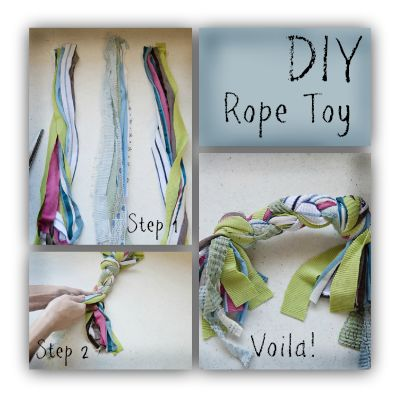 DIY rope toy or Sam using old t-shirts, etc.