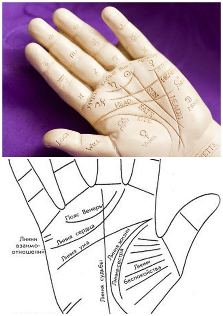 как сфотографировать линии руки дпс стоит