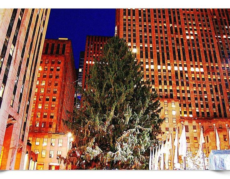 ABC7NY on Facebook 20161130: In just a few hours, the Rockefeller Center Christmas tree will shine big and bright 🎄 If you're heading to 30 Rock tonight, make sure you know which streets will be closed: http://7ny.tv/2g6diYs