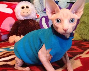 Clothes for Kittens Sale Pack: Buy 3 Fleece EZ Sweaters, 4th in pack is free. Sphynx Cat Kitten Clothes, Adjustable, Cat Dad Mothers Day