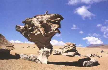 verwering erosie sedimentatie - Google zoeken