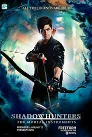 Book series similar to shadowhunters