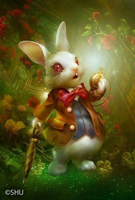 мем кролики фэнтези картинки может быть зона