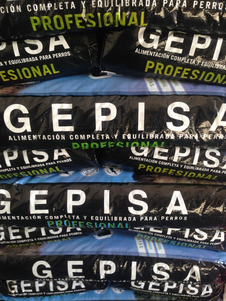 Gepisa