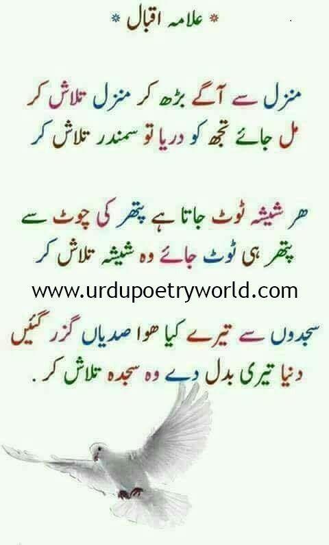 Pin by Chand Shah on True | Poetry, Love poetry urdu, Urdu