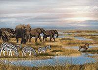 42. Delta del Okavango.