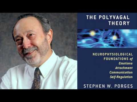 Stephen W. Porges - The Polyvagal Theory ...
