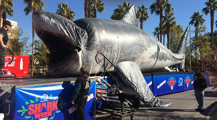 1000+ images about Sharkzilla on Pinterest | Megalodon
