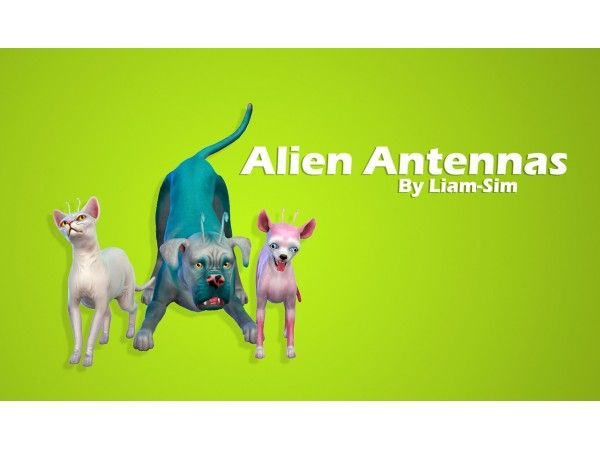 Alien Antennas Sims Pets Sims 4 Pets Sims 4