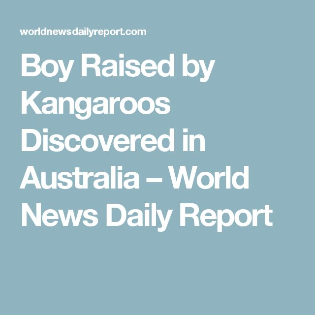 Boy Raised by Kangaroos Discovered in Australia – World News Daily Report