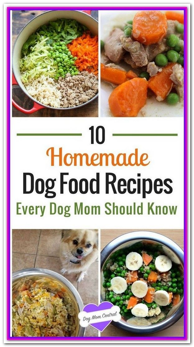 Best Supplements For Homemade Dog Food Healthy dog food