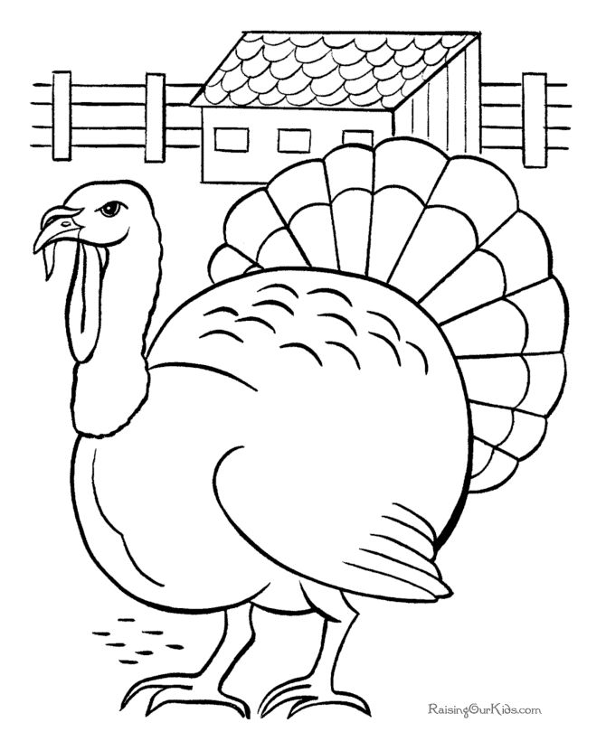 free printable turkey coloring page - Printing Pages