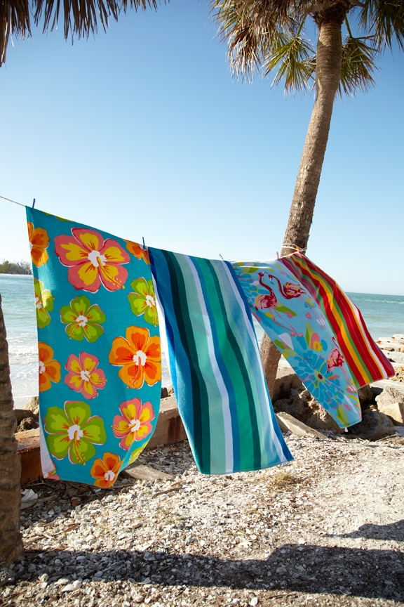 Beach Towels and the breeze ~