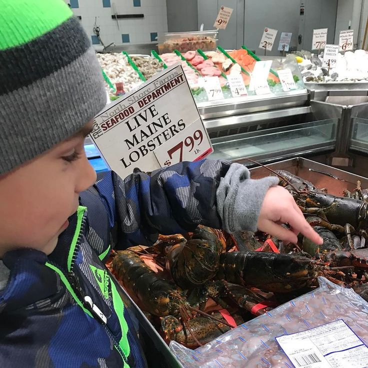 36/365 At the pet store. Oops I mean grocery store. He likes to pet the lobsters. Lol #365 #365Project #ThreeSixtyFive #OnePhotoEveryday #PersonalProject  #lilacblossomphotography #nikon #nikond810 #2017  #candidchildhood #everydaystorytelling #letthekids #magical  #2017Storytellerschallenge #three_sixty_five2017 #Inthe365 #clickinmoms #inthenow #snaplovegrow #pocket_sweetness #lifewellcaptured #our_everyday_moments #illuminatechildhood #embracingtheedge