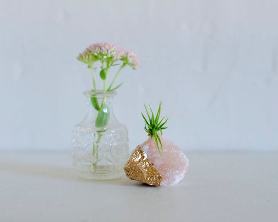Pink Salt Crystal Air Plant Birthday Gift, Coworker Gift, Mom Gift, Plant Lover Gift, Long Distance Friend Thank You Gift, Air Plant Holder